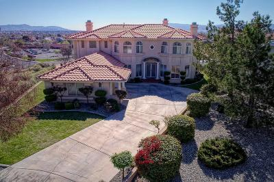 Victorville Single Family Home For Sale: 13255 Candleberry Lane
