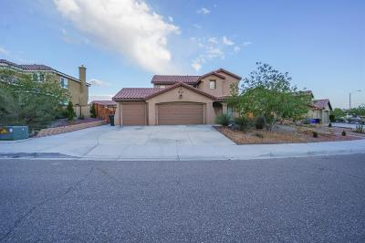 Victorville Single Family Home For Sale: 16977 Grand Triassic Lane