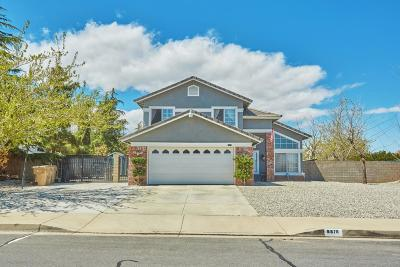 Hesperia Single Family Home For Sale: 6878 11th Avenue