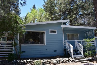 Wrightwood Single Family Home For Sale: 501 Mountain View Avenue