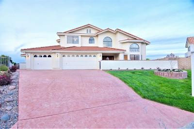 Victorville Single Family Home For Sale: 13685 Sierra Vista Drive