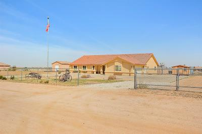 Apple Valley Single Family Home For Sale: 21820 Hercules Street