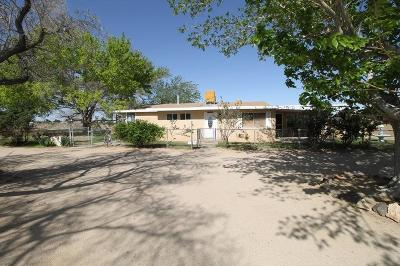 Barstow Single Family Home For Sale: 33328 Delaney Road