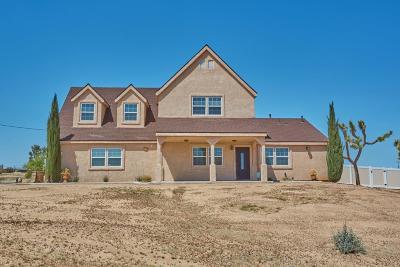 Hesperia Single Family Home For Sale: 18128 Valencia Street