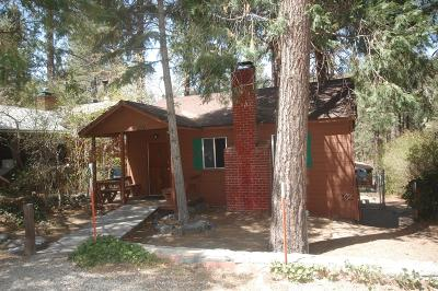 Wrightwood Single Family Home For Sale: 1570 Twin Lakes Road