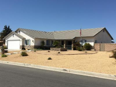 Apple Valley Single Family Home For Sale: 13330 Paraiso Road