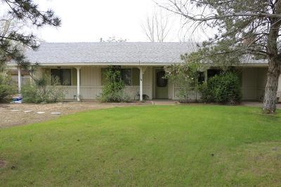 Hesperia Single Family Home For Sale: 15182 Ash Street