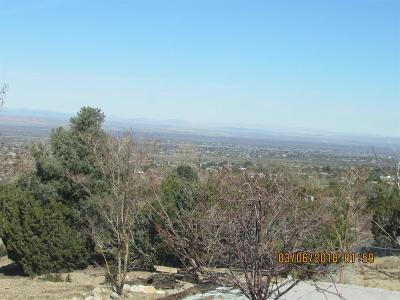 Pinon Hills Single Family Home For Sale: 9329 Pinon Hills Road