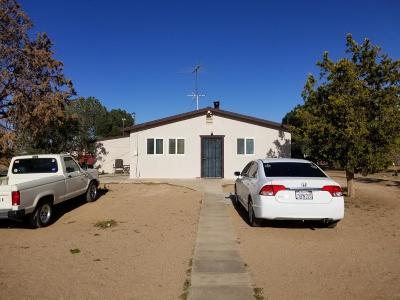 Hesperia Single Family Home For Sale: 11127 Cottonwood Avenue