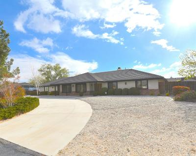 Apple Valley Single Family Home For Sale: 13543 Rincon Road