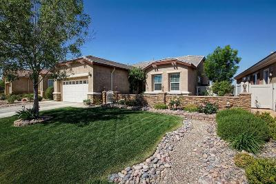 Apple Valley Single Family Home For Sale: 10466 Wilmington Lane