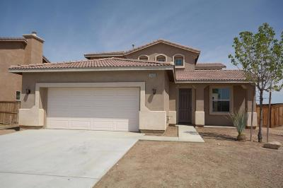 Adelanto Single Family Home For Sale: 14583 Torrey Way