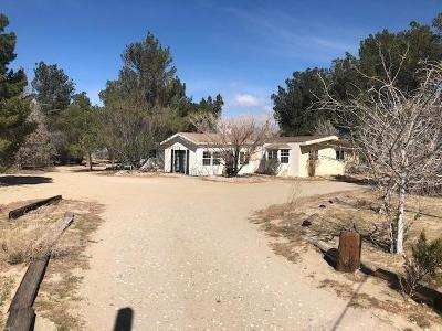 Lucerne Valley Single Family Home For Sale: 10220 Buena Vista Road
