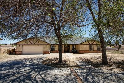 Hesperia Single Family Home For Sale: 8235 E Avenue
