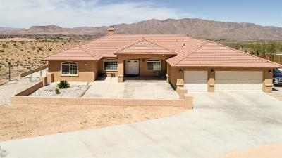 Apple Valley Single Family Home For Sale: 26420 Laramie Street