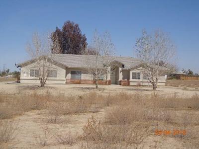 Pinon Hills Single Family Home For Sale: 12323 Pinon Hills Road