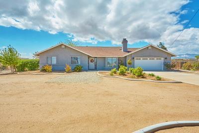 Victorville Single Family Home For Sale: 9617 Olivine Road