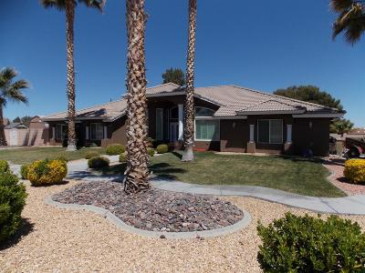 Hesperia Single Family Home For Sale: 14940 Mesa Street