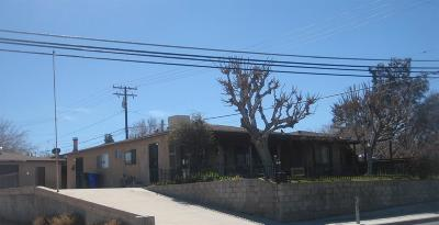 Victorville Single Family Home For Sale: 16614 Victor Street