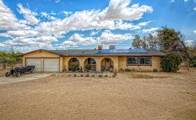 Apple Valley Single Family Home For Sale: 15155 Osceola Road
