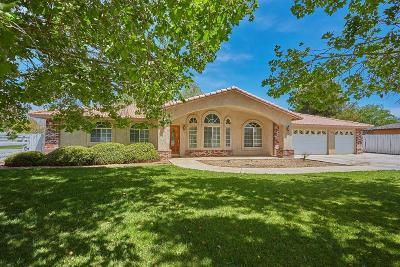 Apple Valley Single Family Home For Sale: 12455 Reata Road