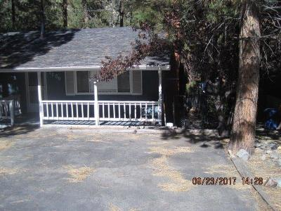Wrightwood Single Family Home For Sale: 1600 Barbara Street