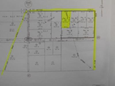 Newberry Springs Residential Lots & Land For Sale: Dreyfus Street