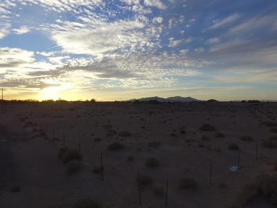 Newberry Springs Residential Lots & Land For Sale: Mountain View Avenue