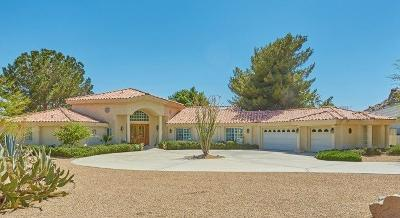 Apple Valley Single Family Home For Sale: 17645 Ridge View Court