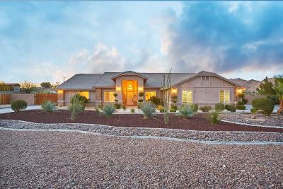 Apple Valley Single Family Home For Sale: 19170 Chole Road
