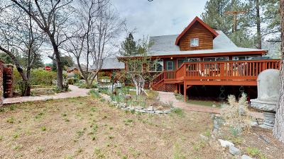 Wrightwood Single Family Home For Sale: 856 Mountain View Avenue