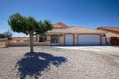 Helendale Single Family Home For Sale: 27066 Silverlakes Parkway