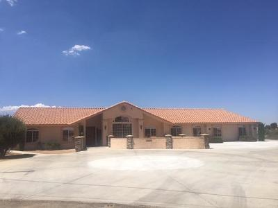 Hesperia Single Family Home For Sale: 17320 Las Lunas Street