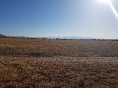 Apple Valley Residential Lots & Land For Sale: Joshua Road