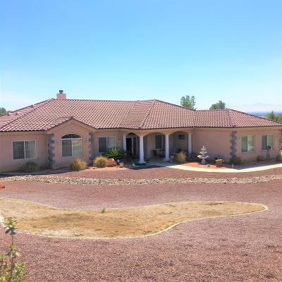 Apple Valley Single Family Home For Sale: 19933 Modoc Road