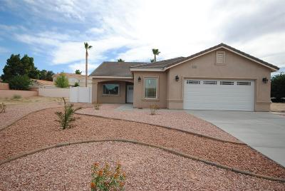 Victorville Single Family Home For Sale: 14020 Spring Valley Parkway
