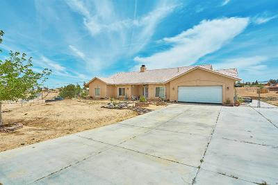 Hesperia Single Family Home For Sale: 17851 Talisman Street