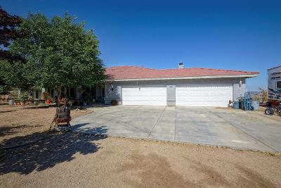Apple Valley Single Family Home For Sale: 9180 Buena Vista Street