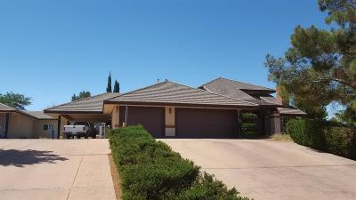 Hesperia Single Family Home For Sale: 18785 Valencia Court