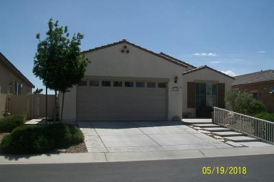 Apple Valley Single Family Home For Sale: 10186 Darby Road