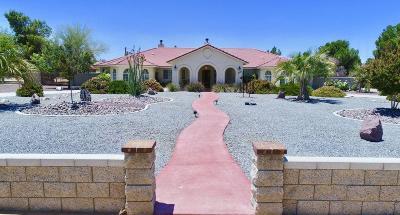 Apple Valley Single Family Home For Sale: 20765 Tonawanda Road