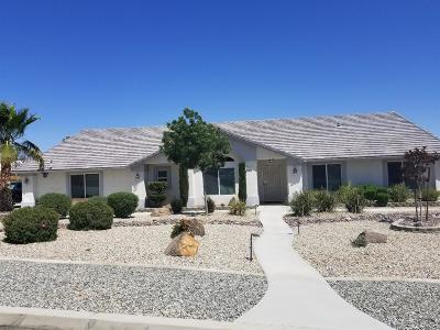 Apple Valley Single Family Home For Sale: 16707 Kasson Road