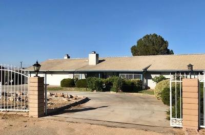 Hesperia Single Family Home For Sale: 17967 Mesa Street
