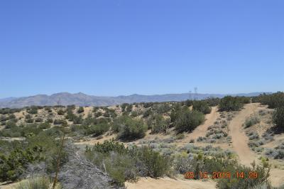 Hesperia Residential Lots & Land For Sale: Los Flores Road
