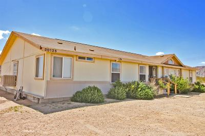 Lucerne Valley Single Family Home For Sale: 30125 Exeter Street