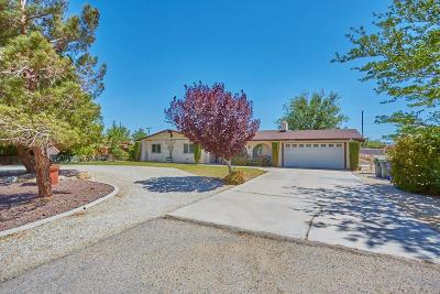 Apple Valley Single Family Home For Sale: 20709 Sitting Bull Road