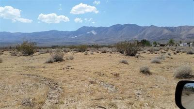Lucerne Valley CA Residential Lots & Land For Sale: $24,500