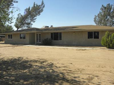 Apple Valley Single Family Home For Sale: 21390 Standing Rock Avenue
