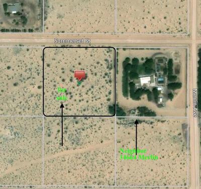Newberry Springs Residential Lots & Land For Sale: Summerset Avenue