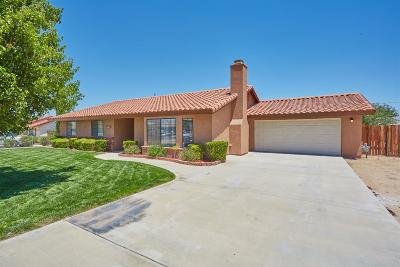 Apple Valley Single Family Home For Sale: 14101 Havasu Road